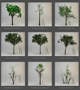 Artlantis Plants