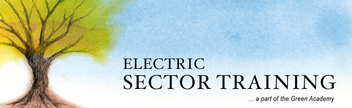 Electric Sector Banner